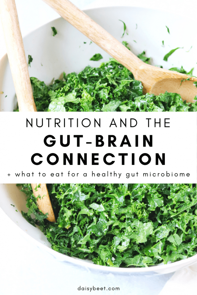 Nutrition and the Gut-Brain Connection - Daisybeet