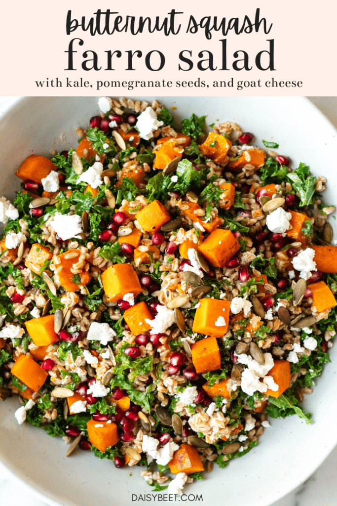 Farro Salad with Butternut Squash, Kale, Pomegranate, and Goat Cheese - Daisybeet